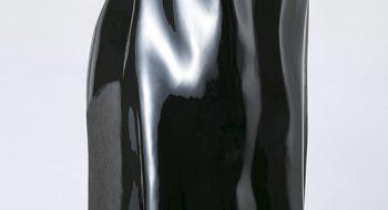 写真:「覆い被さった」漆・麻布 2012年制作