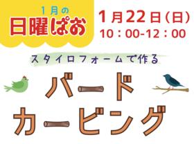 1月の日曜ぱお 開催!