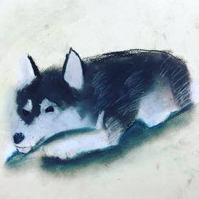 犬のパステル画