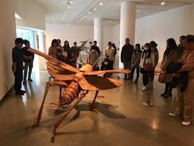 広島市立大学芸術学部の卒業作品展に行きました